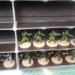Revised Core Set armee box